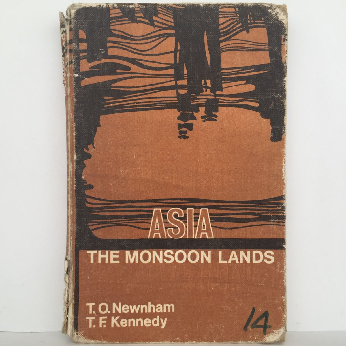 Asia: The Monsoon Lands
