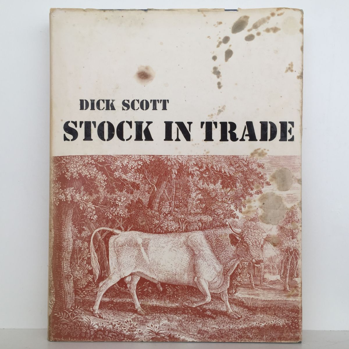 Stock in Trade: Hellaby's First Hundred Years 1873-1973
