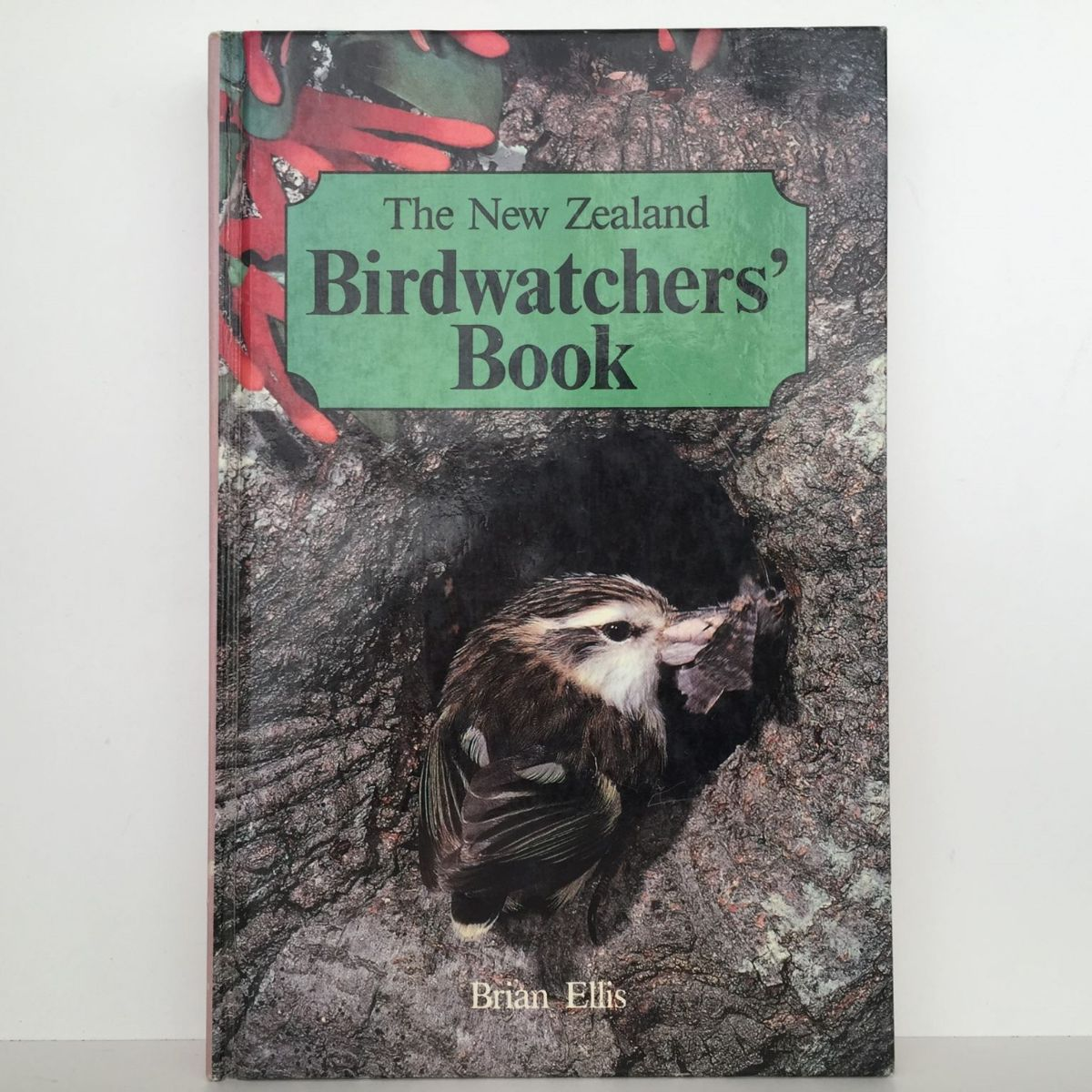 The New Zealand Birdwatchers' Book
