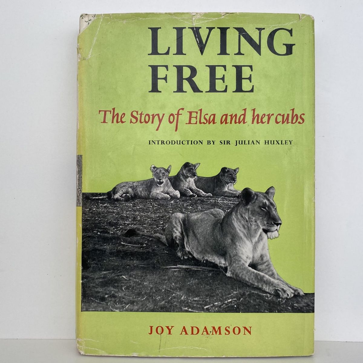 Living Free : The Story of Elsa and her Cubs