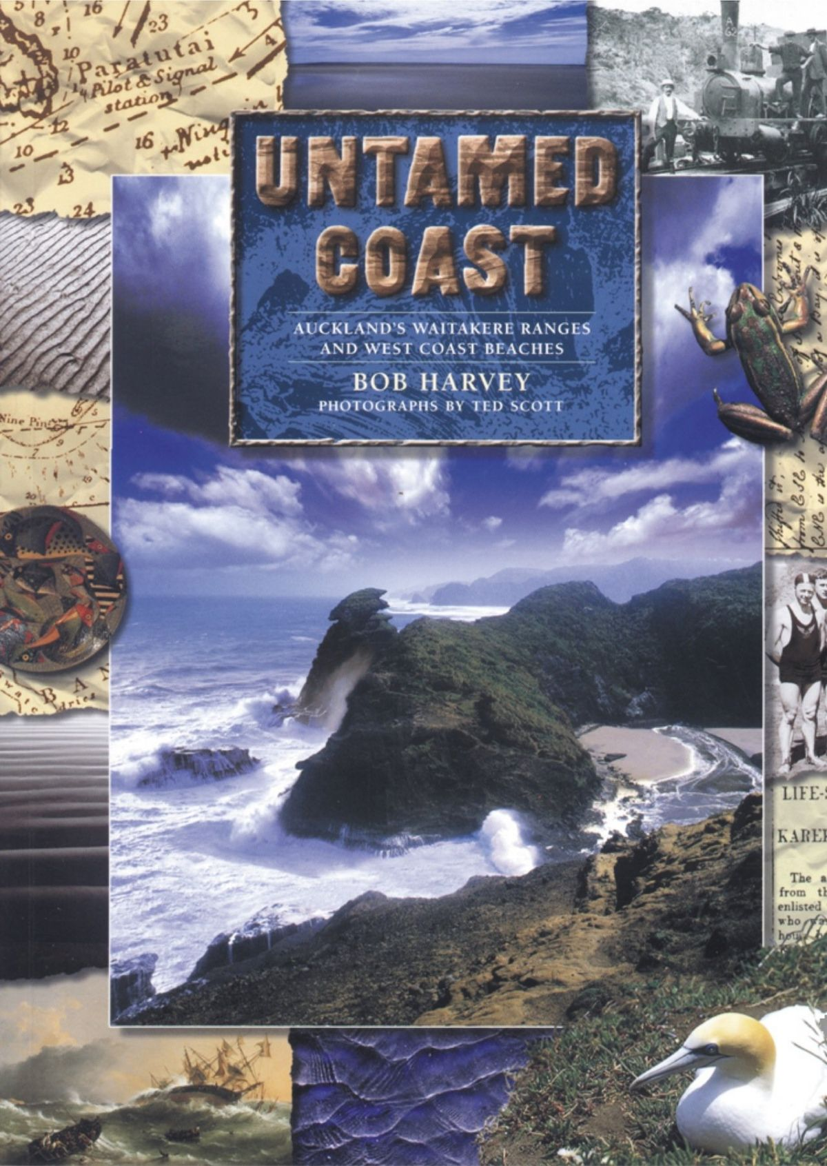 Untamed Coast: Auckland's Waitakere Ranges and West Coast Beaches