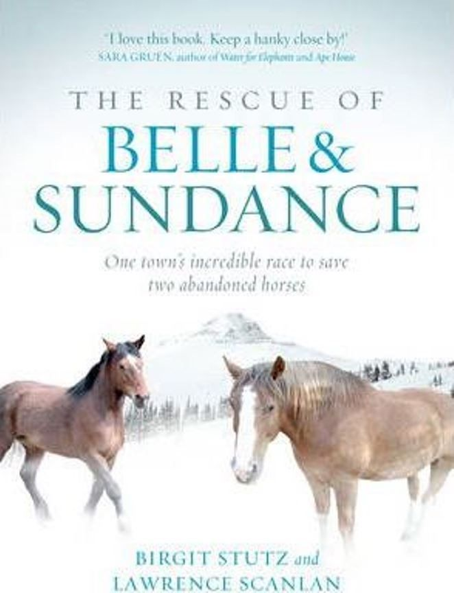 The Rescue of Belle and Sundance: A Race To Save Two Abandoned Horses