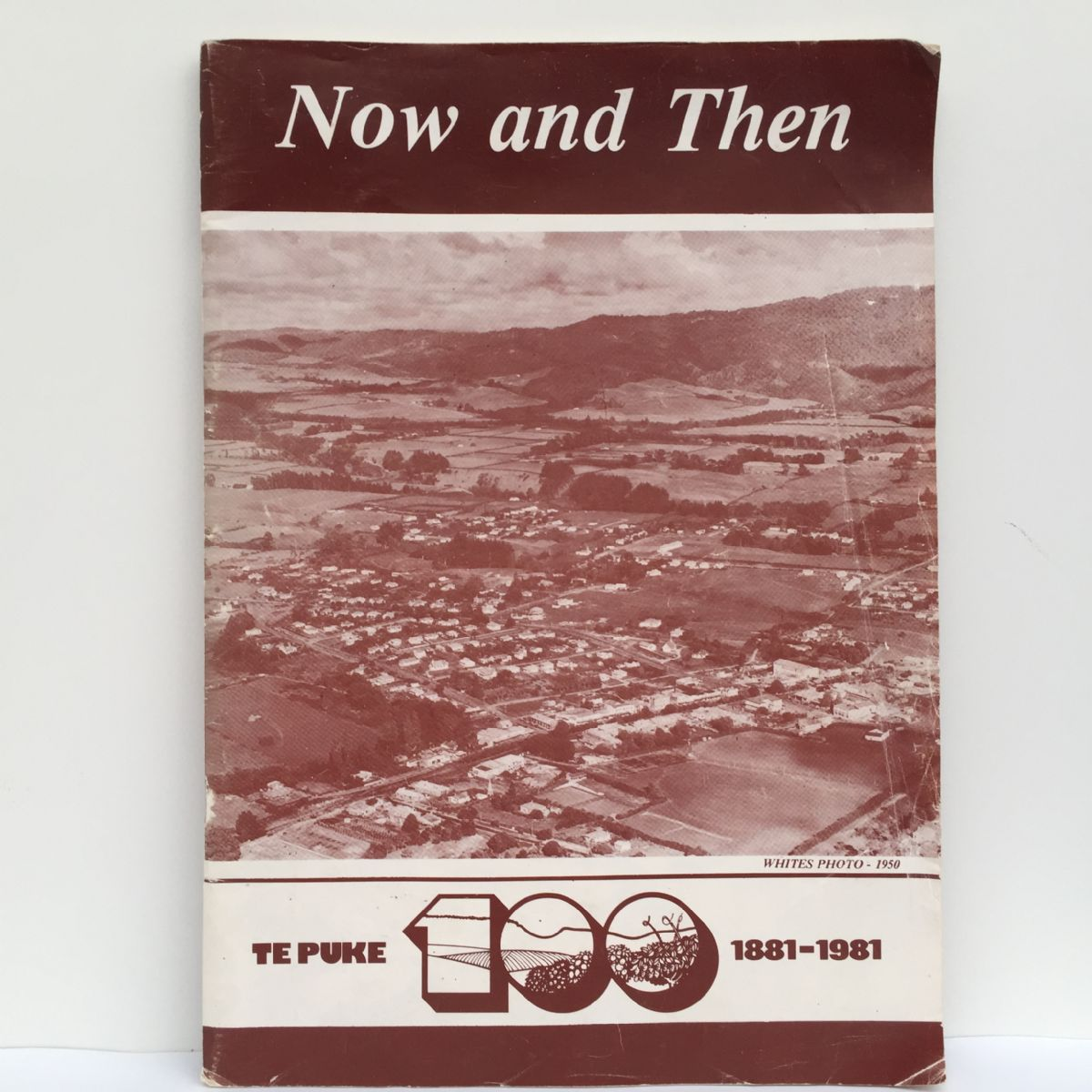 Now and Then : Te Puke 1881-1991