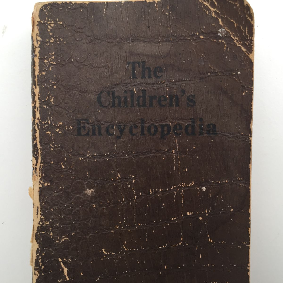 The Children's Encyclopedia or the Reason Why